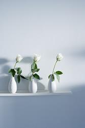 Displaying Flowers